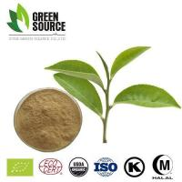 China Herbal Extract Powder EGCG in Green Tea Extract on sale