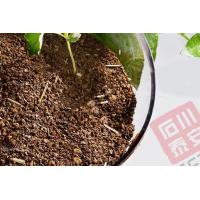 Organic fertilizer Tea Seed Meal With Straw Manufactures