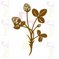 Buy cheap Design Elements plants, flowers, trees,leaf from wholesalers