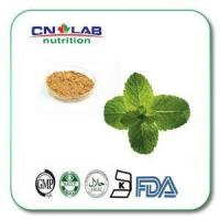 Pure Organic Peppermint Mint Leaf Extract Powder Manufactures