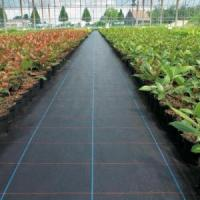 PP Woven Weed Mat Weed Barrier Fabric Manufactures
