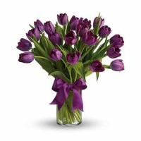 Purple Tulips Manufactures