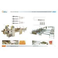 Automatic Packaging System Manufactures