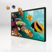 Buy cheap English Naked eye 3D 65 inch horizontal screen display from wholesalers