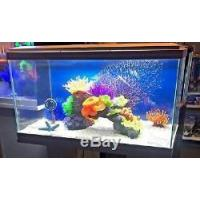 China Ciano Aqua 60 LED Tropical Glass Aquarium Includes Filter, Lights & Heater 58L on sale