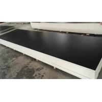 Film Faced Plywood special size film faced plywood Manufactures