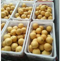 Buy cheap Pear Series Brown Pear from wholesalers