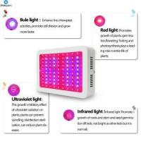 Quality Newest LED Grow Light for Hydroponic System Growth for sale
