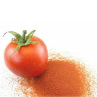 China Tomato Products Spray Dried Tomato Powder on sale