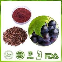 China Grape Seed Extract Powder on sale
