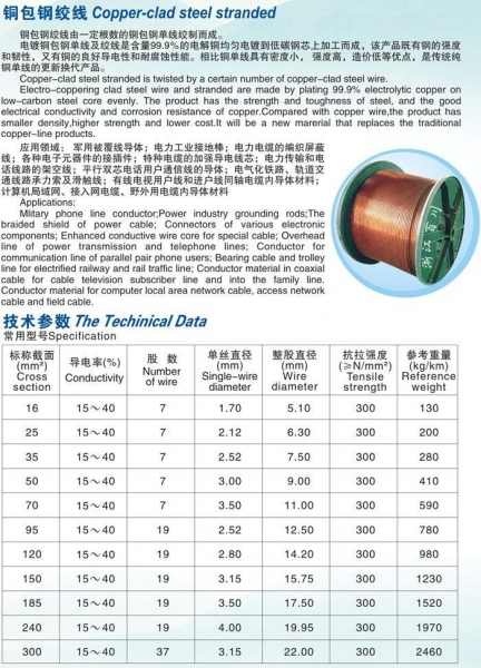 China Copper-clad steel stranded