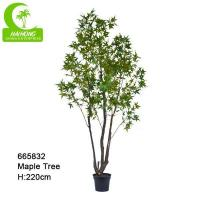 Haihong Insights Artificial MapleTree Manufactures