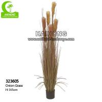 Haihong Insights Artificial OnionGrass Manufactures