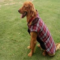 Winter Waterproof dog clothes Plaid jacket vest with four legs Manufactures
