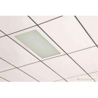 Hot sale Ceiling Supplier in china Manufactures