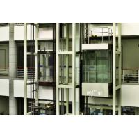 High-Speed Processing of Information and Precise Control Machine Roomless Panoramic Lift Manufactures