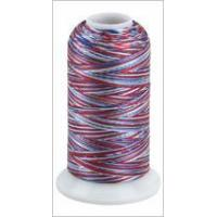 China 100% Rayon Embroidery Thread on sale