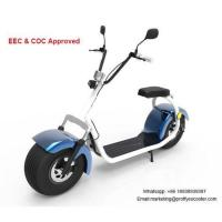 1000W Electric Scooter for Adults Manufactures