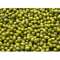Buy cheap China Beans Asia green mung bean high germination china supplier from wholesalers
