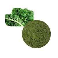 Kale Powder Organic Manufactures
