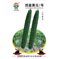 Buy cheap Cucumber Seeds Westar Cucumber 5 from wholesalers