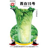 Buy cheap Chinese Cabbage Varieties West White 15 from wholesalers