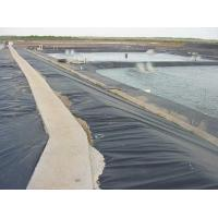 China Textured HDPE Geomembrane on sale