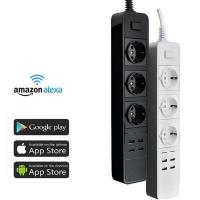 European Standard WiFi Smart Plug Remote Control Voice Control Power Socket with USB Port Manufactures