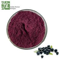Factory Price Natural Brazil Acai Berry Extract Powder Manufactures