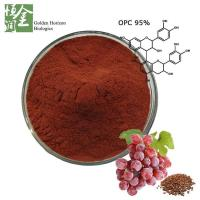 Quality Free Sample Atioxidant Grape Seed Extract OPC 95% in Bulk for sale