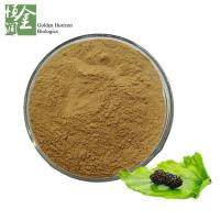 China White Mulberry Leaf Extract Powder on sale
