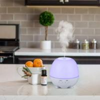 wholesale electric plug-in ultrasonic essential oil diffusers with led light Manufactures