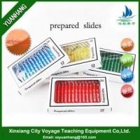 Buy cheap 48pcs Prepared Microscope Palstic Slides from wholesalers