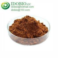 Cinnamon,Cinnamon Powder,Water Soluble Cinnamon Extract Manufactures