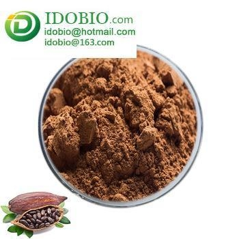 Quality Halal certified raw pure organic instant cocoa powder chocolate cocoa powder bulk for sale