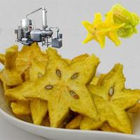 Star Fruit Chips Fried Vacuum Fryer Machine Manufactures