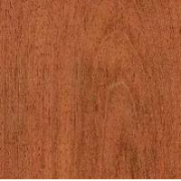 South American Species SAS-Jatoba (Rode Locus) Manufactures