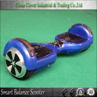 8 inch 6.5 inch Two Wheel Self Balancing Electric Unicycle Scooter Manufactures