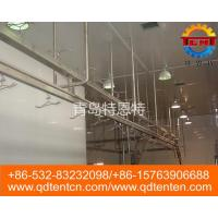 White strip automatic conveying line