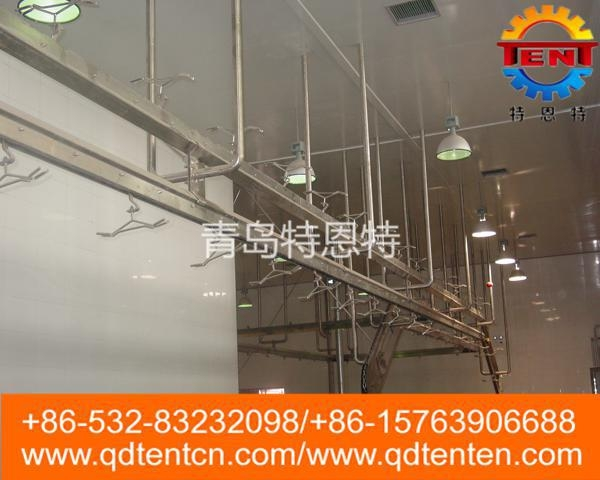 Quality White strip automatic conveying line for sale