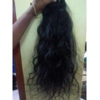Buy cheap Black Hair from wholesalers