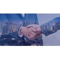 China it consulting firms los angeles on sale