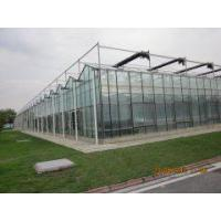 Buy cheap Hollow Float Glass Greenhouse from wholesalers